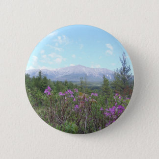 Mount Katahdin and wild flowers Button