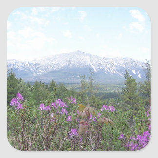 Mount Katahdin and Wildflowers Square Sticker
