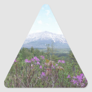 Mount Katahdin and Wildflowers Triangle Sticker