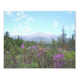 Mount Katahdin with purple flowers Katahdin Photo Print