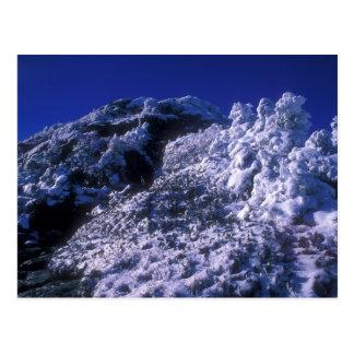 Mount Mansfield Summit Snow Postcard