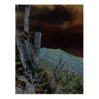 Mount Mitchell North Carolina Postcards