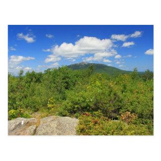 Mount Monadnock from Gap Mountain Postcard