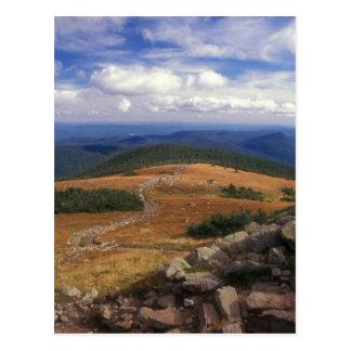 Mount Moosilauke Summit Trail Postcard