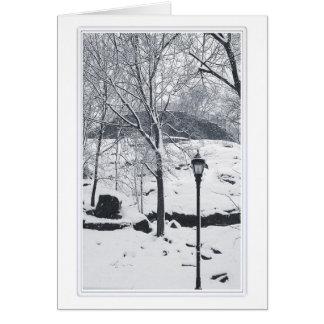Mount Morris Park 2 Card