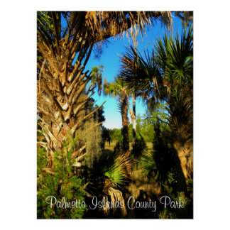 Mount Pleasant Palmetto Islands County Park, Pa... Poster
