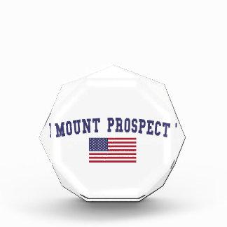Mount Prospect US Flag Acrylic Award
