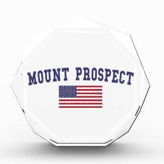 Mount Prospect US Flag Award