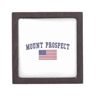 Mount Prospect US Flag Gift Box