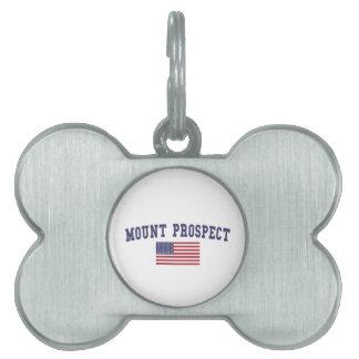 Mount Prospect US Flag Pet Name Tag