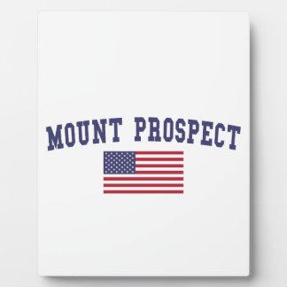 Mount Prospect US Flag Plaque
