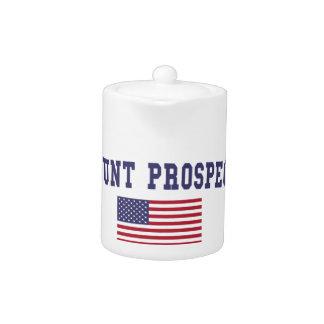 Mount Prospect US Flag Teapot