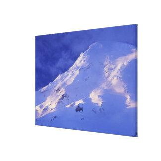 Mount Rainier 3 Canvas Print