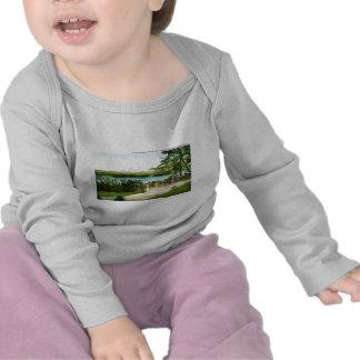 Mount Rainier and Lake Washington T-shirts