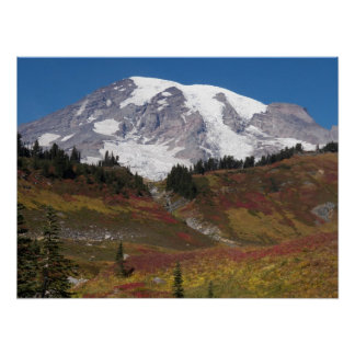 Mount Rainier Autumn Meadow Photo Poster
