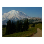 Mount Rainier from the Sourdough Ridge Trail Postcard