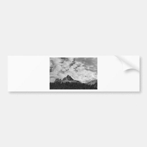 Mount Rainier National Park Bumper Stickers