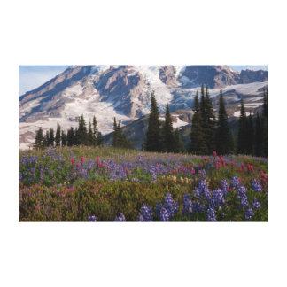 Mount Rainier National Park, Mount Rainier 3 Canvas Print