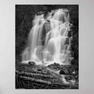 Mount Rainier National Park Waterfall BW Poster