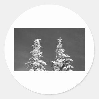 Mount Rainier Pines Classic Round Sticker