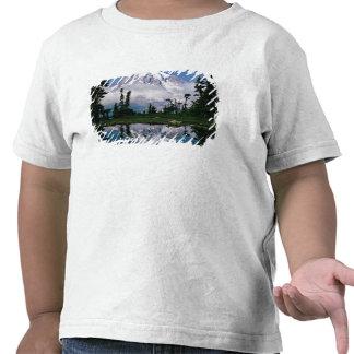 Mount Rainier relected in a mountain tarn Tees