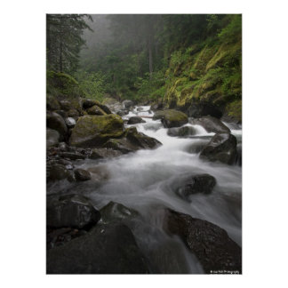 Mount Rainier Stream Poster