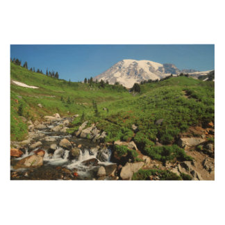 Mount Rainier, waterfall, snow-covered Wood Print