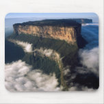 MOUNT RORAIMA 2 MOUSE PADS