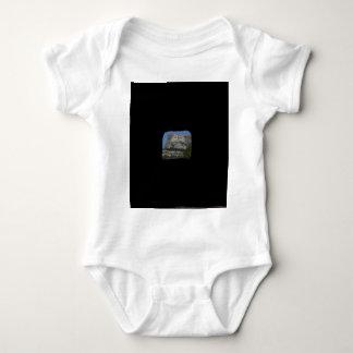 Mount Rushmore Baby Bodysuit