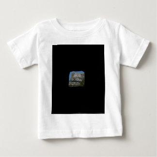 Mount Rushmore Baby T-Shirt
