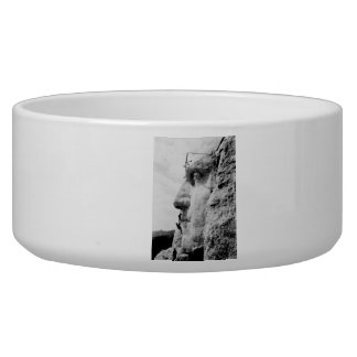 Mount Rushmore construction Dog Bowls