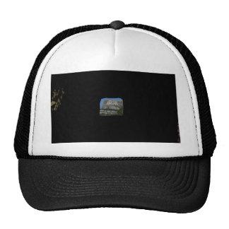 Mount Rushmore Mesh Hat
