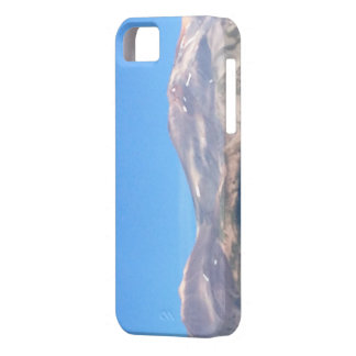Mount Shasta Summit in the Sky iPhone SE/5/5s Case