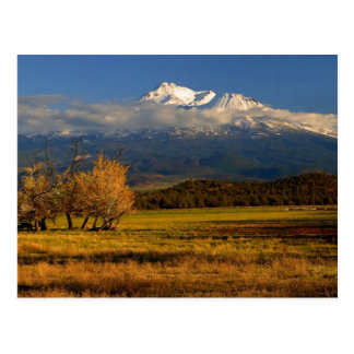 MOUNT SHASTA WITH FALL COLORS POSTCARD