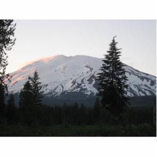 Mount St Helens Photo Sculpture