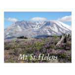 Mount St Helens Postcard