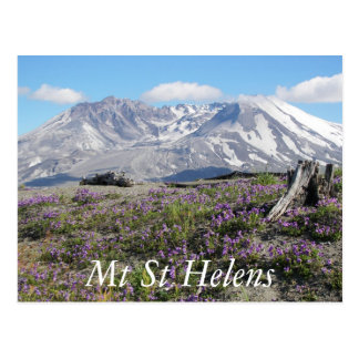Mount St Helens Travel Photo Postcard