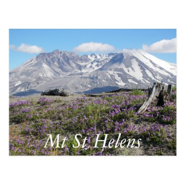 northwestphotos Mount St Helens Travel Postcard