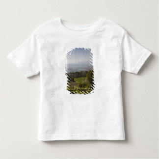 Mount Tabor, site of biblical transfiguration Toddler T-shirt