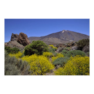 Mount Teide at Canary island Poster