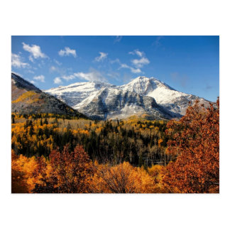 Mount Timpanogos in Autumn Utah Mountains Postcard