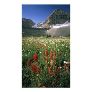 MOUNT TIMPANOGOS WILDERNESS, UT, US, PHOTO PRINT