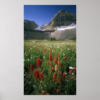 MOUNT TIMPANOGOS WILDERNESS, UT, US, POSTER