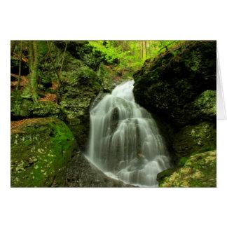 Mount Toby Roaring Brook Falls Card