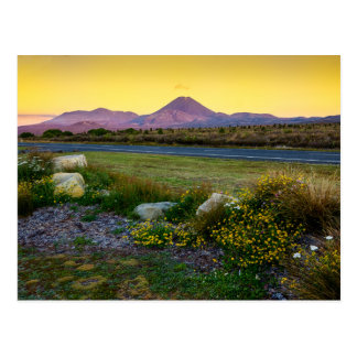 Mount Tongariro, New Zealand Postcard