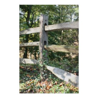 Mount Vernon fence Poster