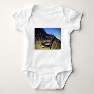 Mount Vesuvius Infant Creeper