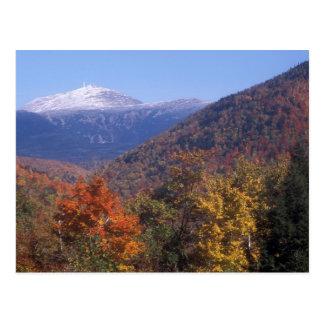 Mount Washington Snow Foliage Postcard