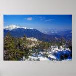 Mount Washington Winter Treeline View Posters
