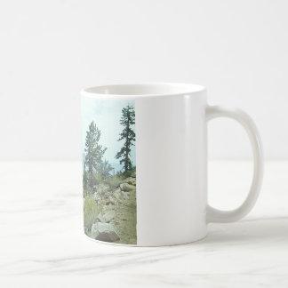 Mount Whitney Trail View #5 Mug - by Fern Savannah